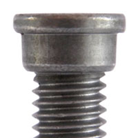 Screw Stepped head
